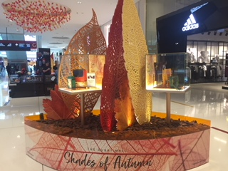 Autumn VM at Dubai mall